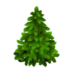 Christmas tree, realistic vector illustration.