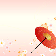 Japanese cherry blossom with traditional umbrella oriental background. Vector illustration