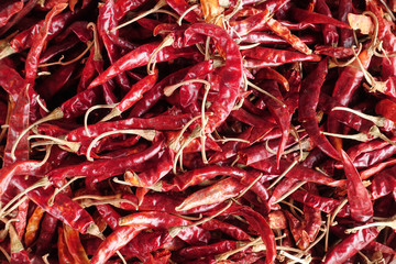 spices - dried red hot chilli chillies pepper