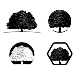 Oak Tree Silhouette Logo Icon Bundle