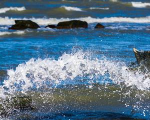Splash of white wave