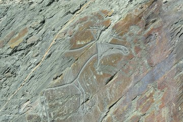 Rock carvings-petroglyphs in Western Siberia