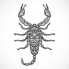 Ornate Scorpio. Vintage black and white Zodiac sign. Vector hand drawn vector illustration