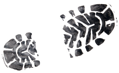 shoe print