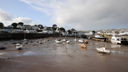 Wall Mural - Paignton harbour Devon England uk boats low tide near Torquay
