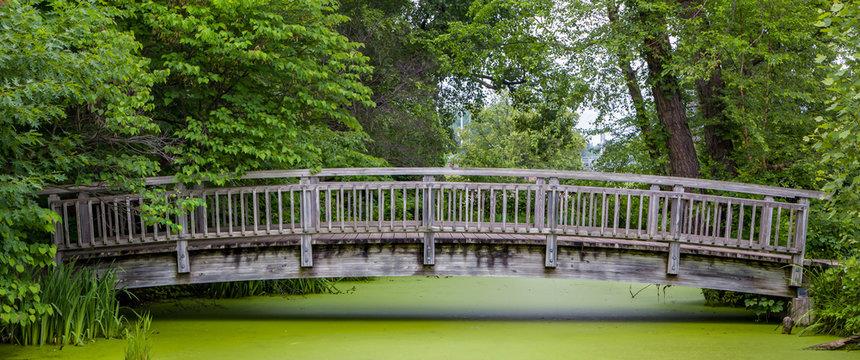 Wood Bridge Over Pond Panorma