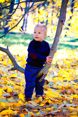 Baby boy in the woods