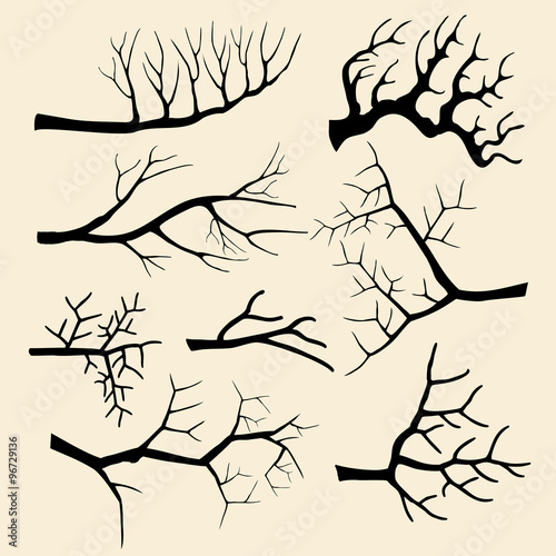 Wall mural Tree branches vector set in hand drawn style