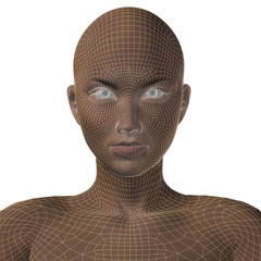Conceptual 3D wireframe human female or woman face or head