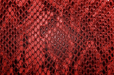 Snake skin, can use as background