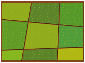 Pattern of crop from top view