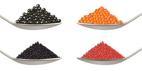 Caviar - Oeufs Poissons