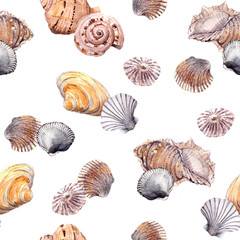 Seamless sea shell wallpaper on white background. Watercolor