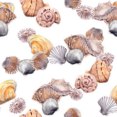 Seamless sea shell pattern on white background. Aquarelle