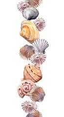 Seamless border line with seashells. Aquarelle frame