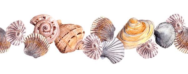 Seamless border strip with seashells. Watercolour banner