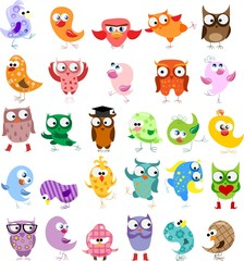 Cute birds in vector. Cartoon set