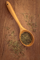 Dried rosemary leaves in wooden spoon on teak wood  background .