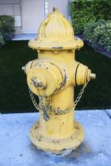 ラスベガスの消火栓