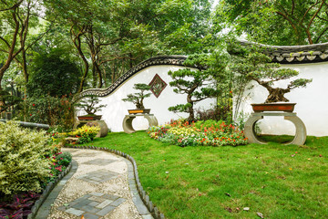 The beauty of the Chinese traditional gardens and green bonsai plants