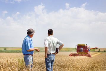 Business partners on wheat field Wall mural