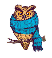 Colorful peach owl in blue scarf.