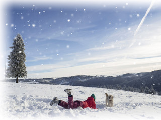 Christmas background with snowy fir trees . Winter snow background