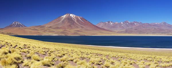 Desert lake Laguna Miscanti volcano, Altiplano, Chile