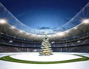 Stadion Mittellinie Winter
