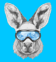 Portrait of Kangaroo with ski goggles. Hand drawn illustration.