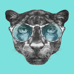 Portrait of Panther with glasses. Hand drawn illustration.