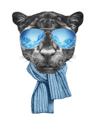 Portrait of Panther with mirror sunglasses and scarf. Hand drawn illustration.