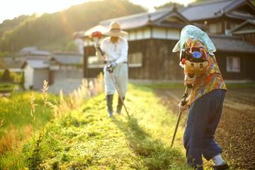 mowing persons in rural area - 地方の農家で草刈りをする高齢者夫婦 Fototapete