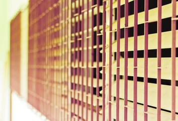Steel cage window