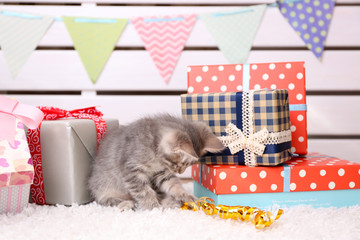Cute little grey kitten celebrating birthday