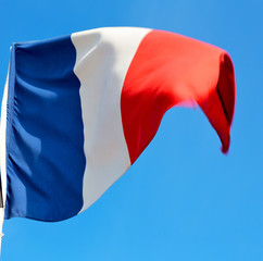 french waving flag in the blue sky  france  colour and wave
