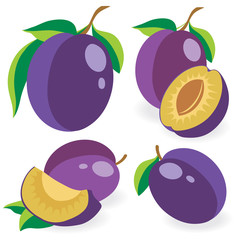 Collection of vector plums