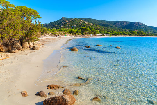 Sandy beautiful Palombaggia beach with azure sea water, Corsica island, France