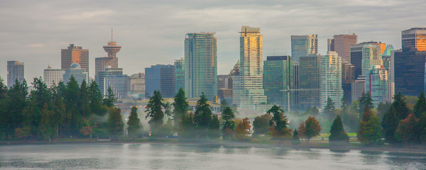Vancouver Cityscape with Stanley Park / Looking south towards the city of Vancouver from Vancouver Harbour.  The trees are a part of Stanley Park. Wall mural