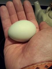 Huevo azul
