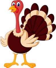 cute Cartoon turkey of illustration