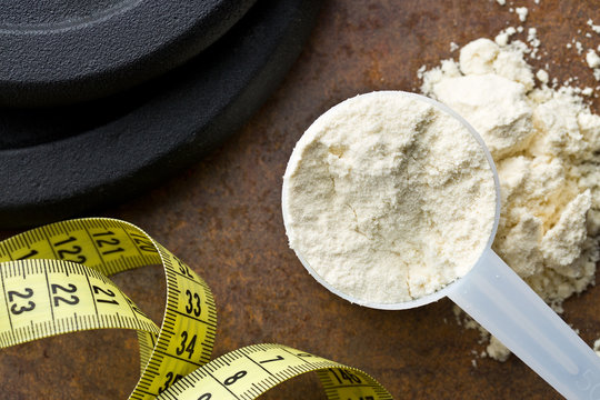 the whey protein