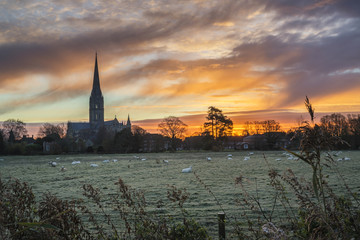 Winter frosty sunrise landscape Salisbury cathedral city in Engl