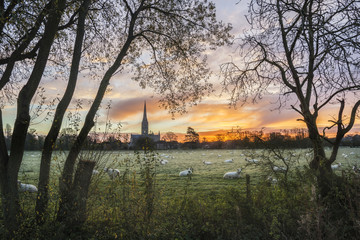 Printed roller blinds Khaki Winter frosty sunrise landscape Salisbury cathedral city in Engl