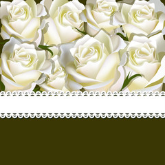 Floral background of white rose with ribbon. Floral copy-space