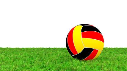 Fussball in Landesfarben auf Rasenfläche