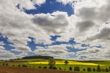 Felder und Wiesen im Frühjahr