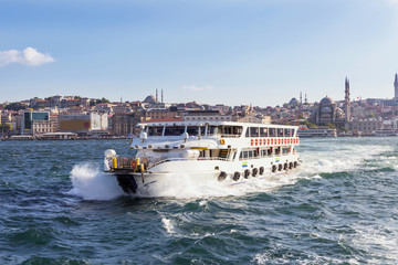 Sigths of Istanbul ,a cruise on the Bosphorus. Topkapi Palace, Hagia Sophia, New Mosque.