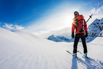Skiing: rear view of a skier in powder snow. Italian Alps, Europ Wall mural