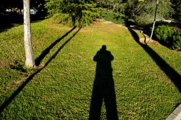 sombra,parque de los juncos,cartagena,españa